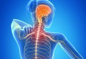 Transplante de células-tronco interrompe avanço da esclerose múltipla (@JornalOGlobo)