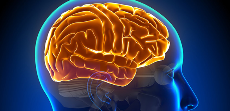 Células-tronco do sangue de cordão umbilical são eficazes para tratar paralisia cerebral em crianças